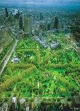 Melbourne - la forêt urbaine
